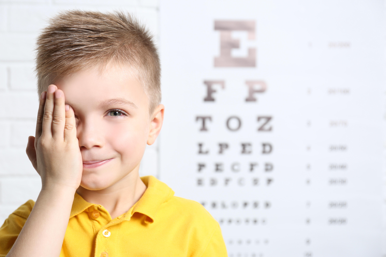 látás gyermek számítógép hogy az agy hogyan kapcsolódik a látáshoz