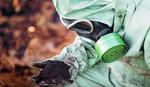 RADON NAPADA PLUĆA I ŽELUDAC Lekari upozoravaju na oprez zbog radioaktivnog gasa u kućama