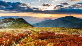 Bieszczady - jedne z najdzikszych gór Europy