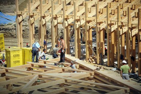 U rekonstrukciji se koristi postojani sibirski ariš