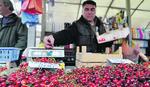 RUSI DIKTIRAJU CENU TREŠNJE Papreno skupo sezonsko voće