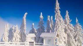 Zima na wesoło - konkurs fotograficzny