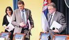 VUJOVIĆ O PROCENAMA MMF Vlada uverena da će podići penzije i plate