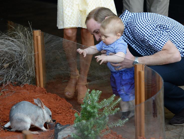 Ausztráliába a pici György herceget is elvitték.