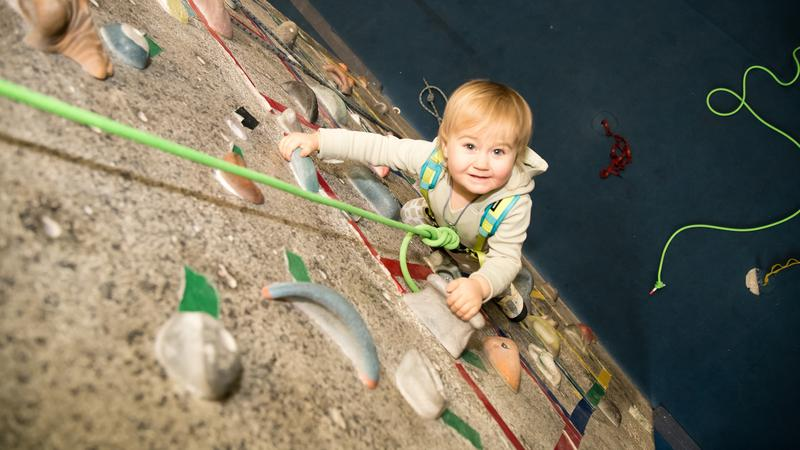 A cuki kislány tíz méter magasra is felmászik! /Fotó: Northfoto