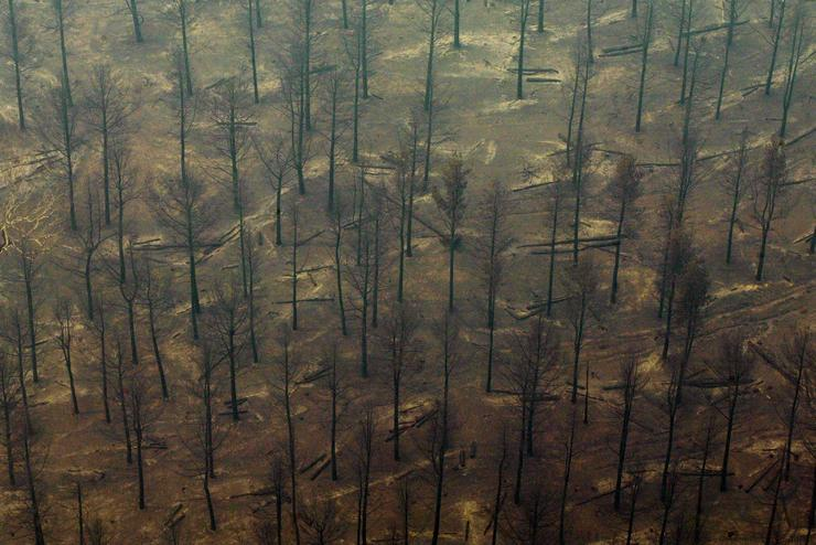 Vajon meddig bírja még a bolygónk fenntartható fejlődés nélkül / Fotó: EUROPRESS-GETTYIMAGES