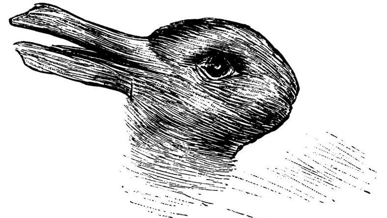 Nyúl vagy kacsa? Ön mit lát a képen?