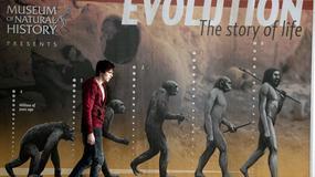 """""""Wiecznie żywy"""" na szczycie amerykańskiego box office'u"""