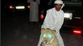 BESNO I BAHATO! Ovako žive bezobrazno bogati klinci Dubaija