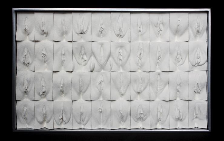 Jamie McCartney vaginagyűjteménye - Fotó: Northfoto