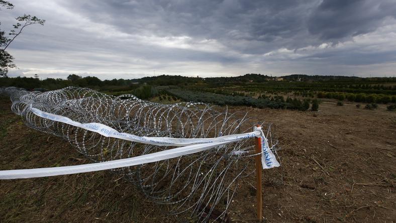 Jöhet a magyar-osztrák határzár: az osztrák belügyminiszter kerítést építene, burgenlandi tartományi vezető pedig állandó határellenőrzést javasol! (Képünk illusztráció) /Fotó: Fuszek Gábor