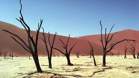 "Namibia - Dead Vlei - ""martwe bagno"""
