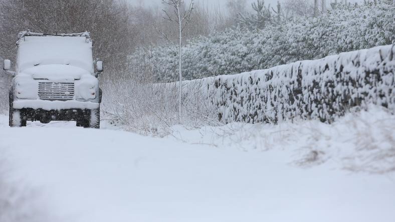 Anglia fehér lett / Fotó: Europress-GettyImages