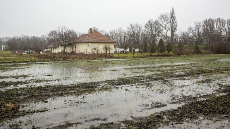 Belvíz Békés megyében - Fotó: MTI Rosta Tibor