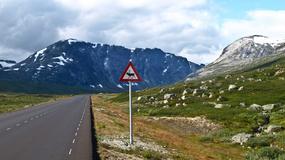 Norwegia pokazuje potęgę natury. Niezwykły kraj fiordów otoczonych wysokimi górami i lodowcami [GALERIA]