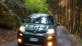 Fiat Panda 4x4: dzielny maluch
