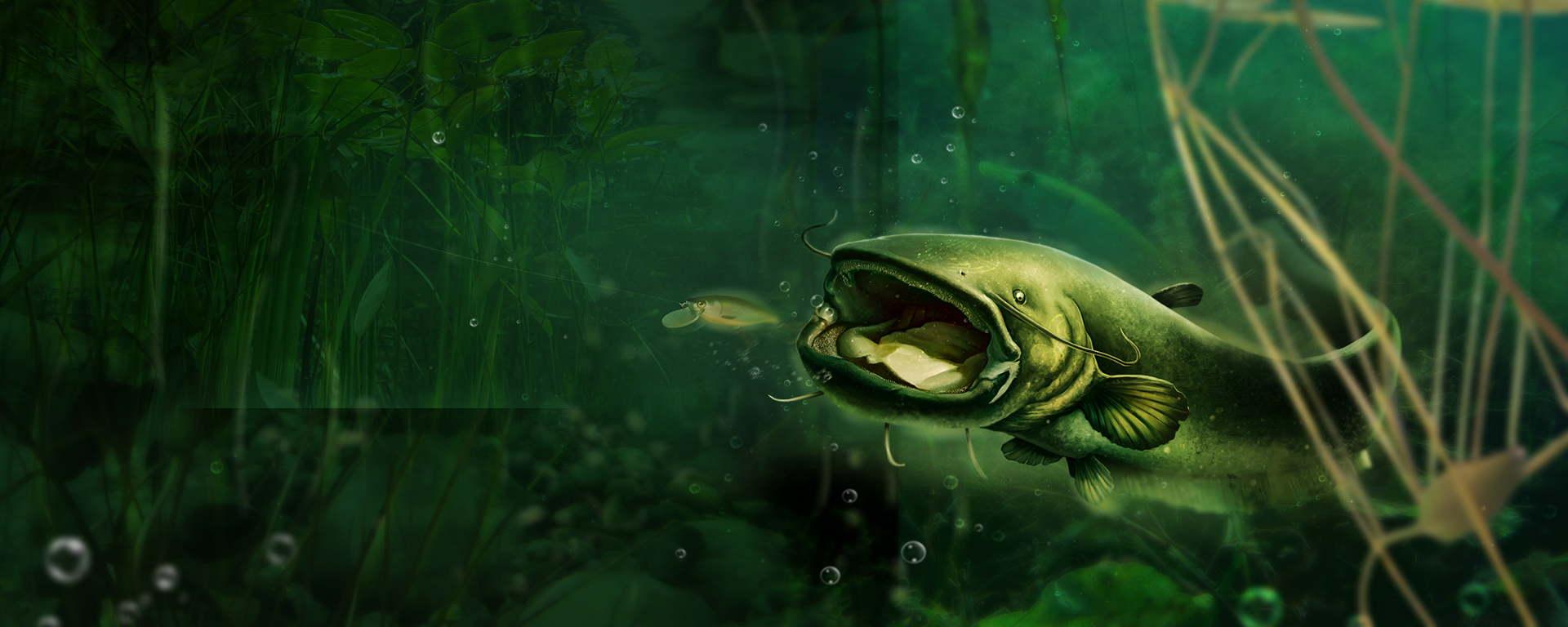 Czy wiedziałeś, że łowienie ryb i polowanie mogą być tak wciągające?