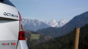Octavia 4x4 wkrótce w sprzedaży