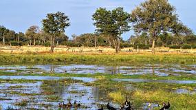 Zambia - Podstawowe informacje