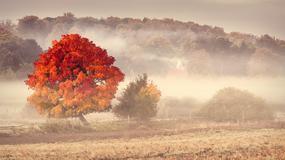 Najpiękniejsze miejsca na jesienny urlop w Polsce