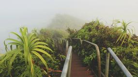 """""""Schody do nieba"""" na Hawajach zostaną otwarte dla turystów?"""