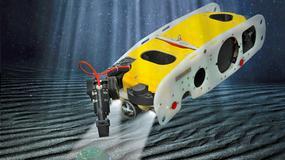 Sea Wasp rozbroi każdy podwodny ładunek