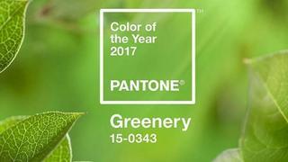 Kolor roku 2017: greenery