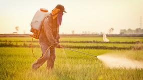 Choroby, do których przyczyniają się pestycydy i nawozy sztuczne stosowane w produkcji żywności