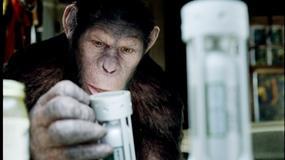"Sequel ""Planety małp"" bez reżysera?"