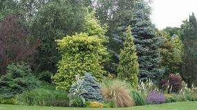 Sposób na piękny ogród