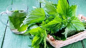 10 roślin oczyszczających nerki