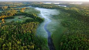 Mazury - między niebem a wodą; dzika przyroda na zdjęciach Waldemara Bzury