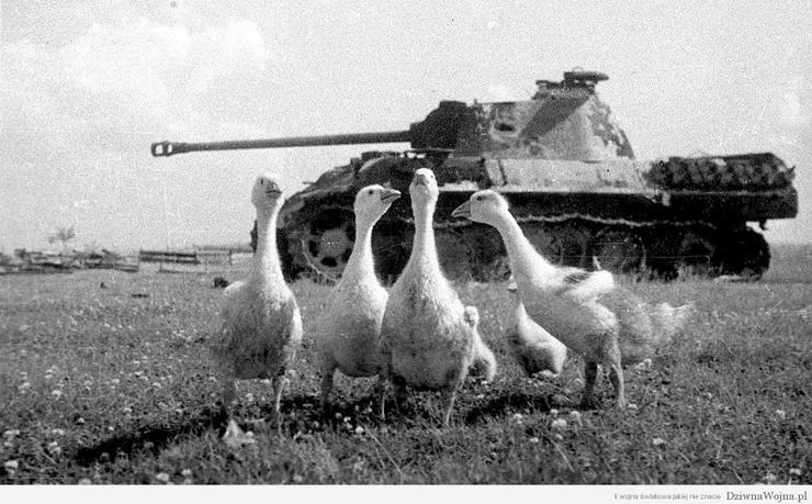 II wojna światowa jak...
