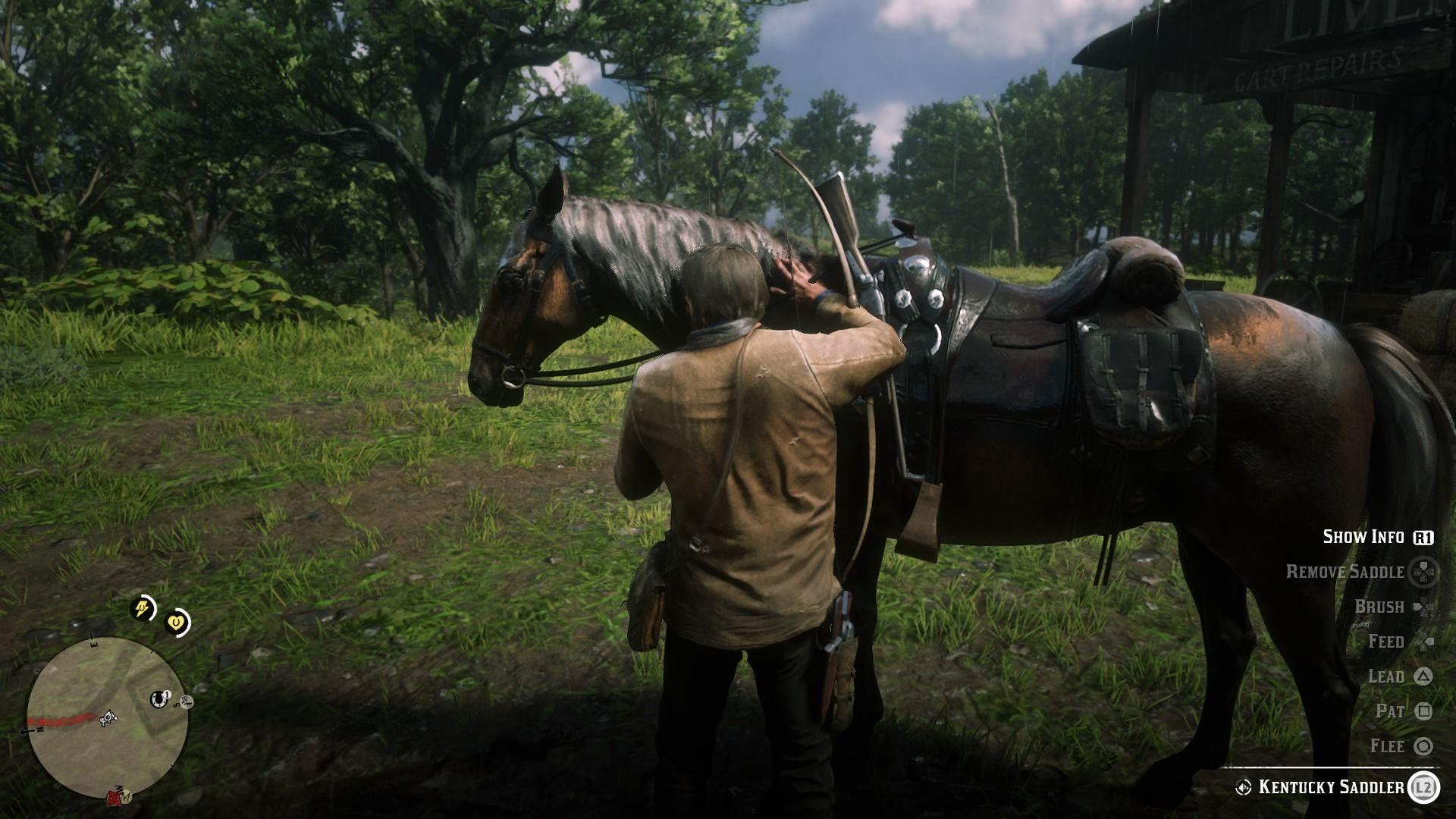 O koňa sa treba starať a dávať naň veľký pozor.