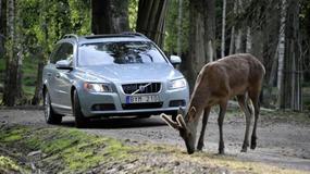 Nowe systemy bezpieczeństwa Volvo