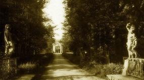 Tajemnicza wyspa - pałac w Radomierzycach