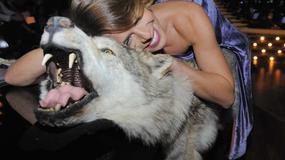 Sesja Nataszy Urbańskiej na wilku. Obciach czy sexy?