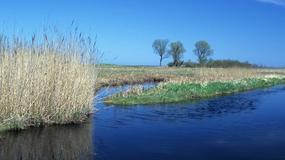 Dziki Bałtyk - najciekawsze przyrodniczo zakątki polskiego wybrzeża