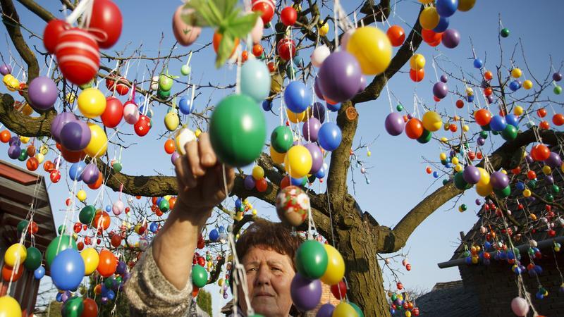 Nagyatádon 2500 húsvéti tojással feldíszítettek fel egy fát /Fotó: MTI-Varga György