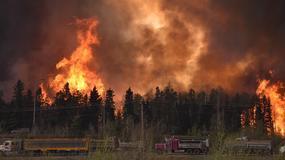 Kanada: olbrzymi pożar lasów w prowincji Alberta
