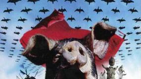 Folwark zwierzęcy - plakaty