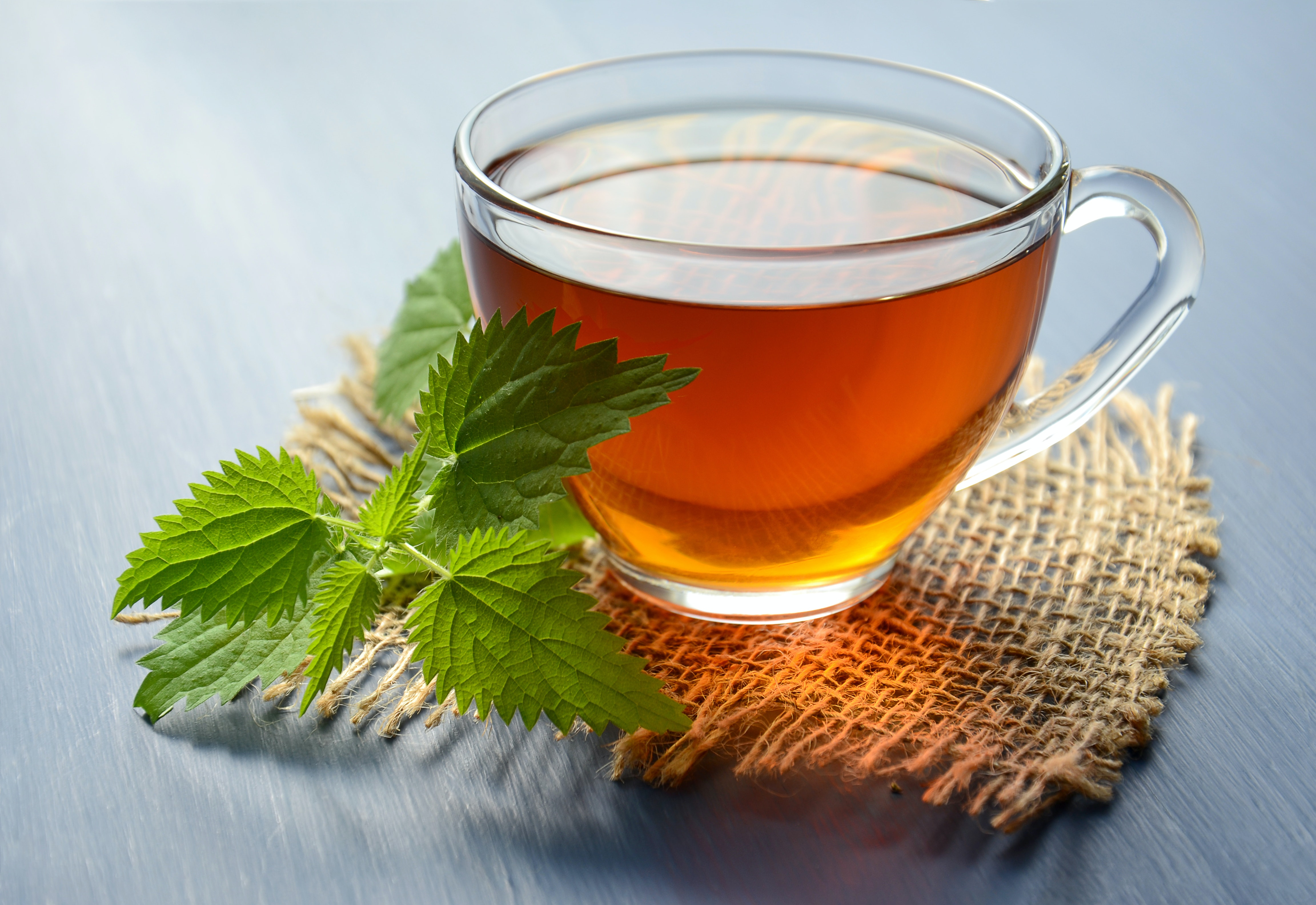 Menta tea a fogyáshoz. Fehér jód fogyni paradicsomvörös