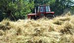NAŠA POSLA Opljačkan fudbalski stadion, ukraden - traktor!