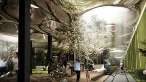 Projekt Delancey Underground - podziemny park Lowline w Nowym Jorku