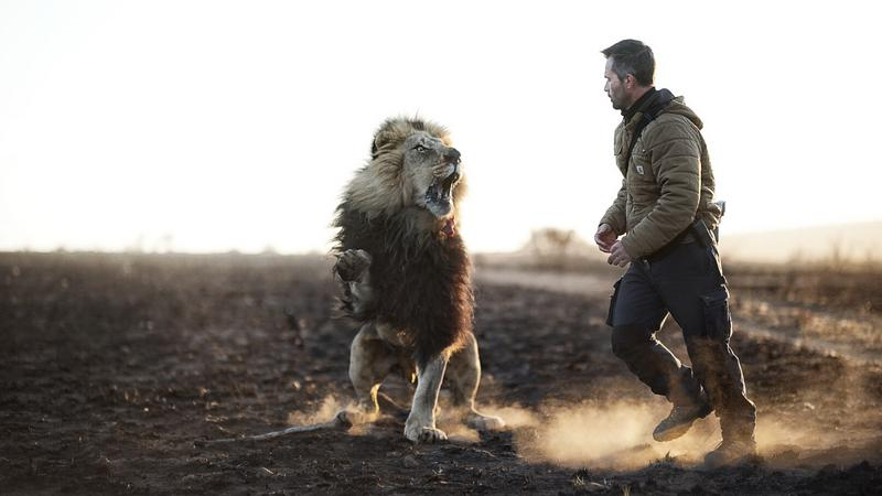 oroszlánokkal suttogó - Fotó: Northfoto