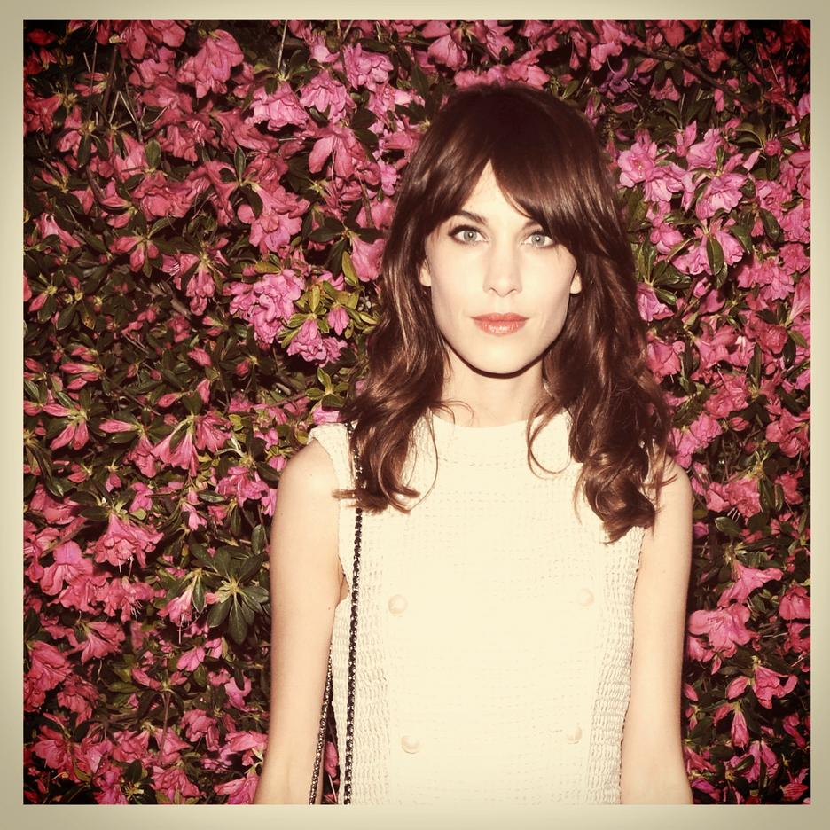Alexa Chung / getty images