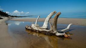 Polskie plaże bez tłoku