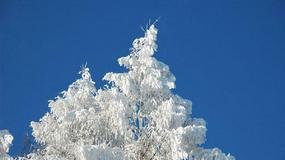 Polska - Bieszczady na nartach i parolotni