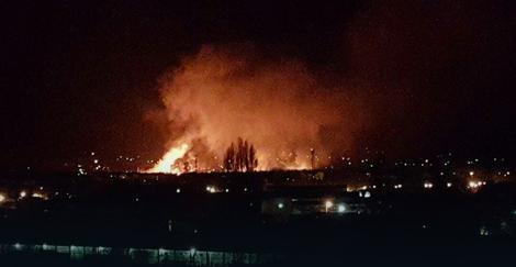 Vatra zahvatila trsku uz Dunav