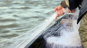 Tajemniczy stwór morski znaleziony u wybrzeży Chin